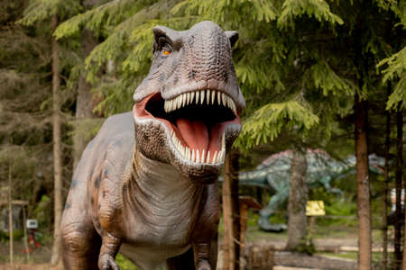 Tyrannosaurus Rex or T-Rex is a carnivorous genus of Coelurosaurian Theropod dinosaur, Tyrannosaurus Rex or T-Rex lived in the Cretaceous period, on nature background. 版權商用圖片