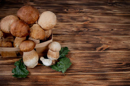 Mushroom Boletus over Wooden Background. Autumn Cep Mushrooms. Ceps Boletus edulis over Wooden Background, close up on wood rustic table. Cooking delicious organic mushroom. Gourmet food