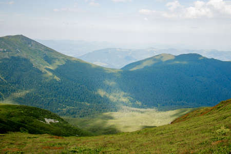 Carpathians mountain range at summer morning. Beauty of wild virgin Ukrainian nature. Peacefulness