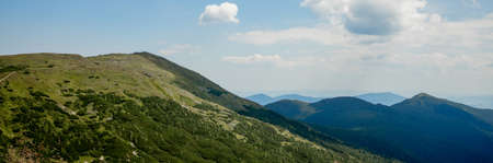 Panorama of Carpathians mountain range at summer morning. Beauty of wild virgin Ukrainian nature. Peacefulness 版權商用圖片