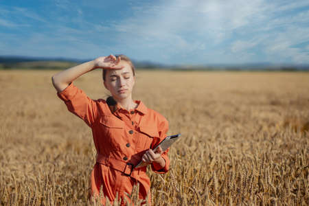 Caucasian Agronomist checking the field of cereals and sends data to the cloud from the tablet. Smart farming and digital agriculture concept. Successful organic food production and cultivation Standard-Bild