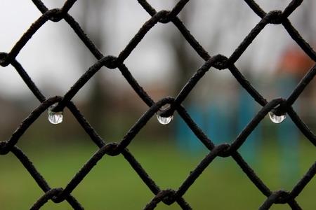 Rain drops. Blur background. Symetry Stock Photo