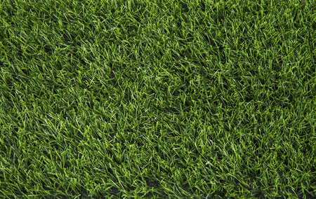 Artificial green grass texture background top view.