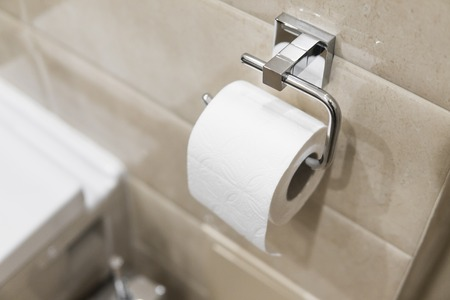 Roll of white toilet paper on metal paper holder.