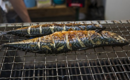 Appetizing mackerel grilled on a fest food. Steet food. Imagens