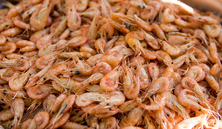 Close-up view of a pile of fresh little shripms.