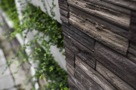 Natural stone bricks as a decoration on a wall with a green plants. Natural stone wall texture. The walls are made of stones or marbles. Decoration for the walls or febces.
