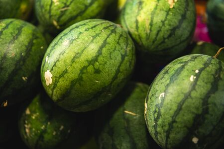 Ripe and sweet watermelons in the market. Close up. A lot of large ripe green striped watermelons. Organic farmer market, store 版權商用圖片 - 131414085