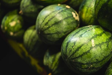Ripe and sweet watermelons in the market. Close up. A lot of large ripe green striped watermelons. Organic farmer market, store