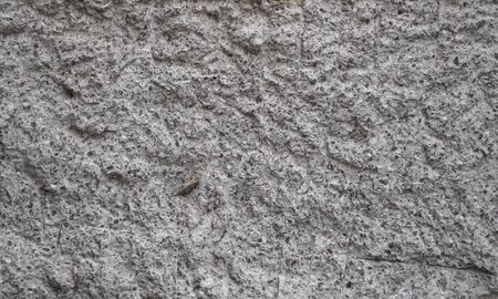 Concrete grey wall covered with gray cement texture as background can be used in design