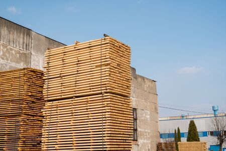 Warehouse for sawing boards on a sawmill outdoors. Timber mill, sawmill. Storage of planed wooden boards. Piles of wooden boards in the sawmill. Planking. Industry Stok Fotoğraf