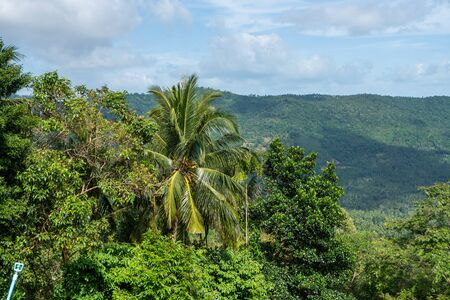 Summer tropical forest hills with a cloudy sky. Mountains and white clouds on a blue sky. Tropical summer holiday vacation concept.