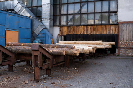 Storage of piles of wooden boards on the sawmill. Sawing drying and marketing of wood. Pine lumber for furniture production, construction. Lumber Industry.