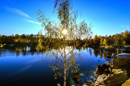 european white birch: Granite earth-deposit.  Abandoned Granite Stone Pit is in the autumn.
