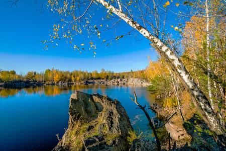 european white birch: Granite stone pit.  Abandoned Granite Stone Pit is in the autumn.