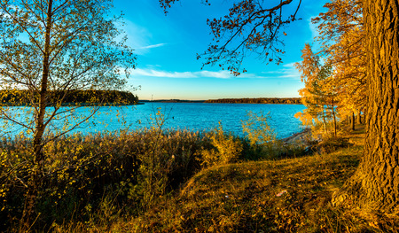 european white birch: View on river water reservoir. The river water reservoir is in the autumn during sunset. Stock Photo