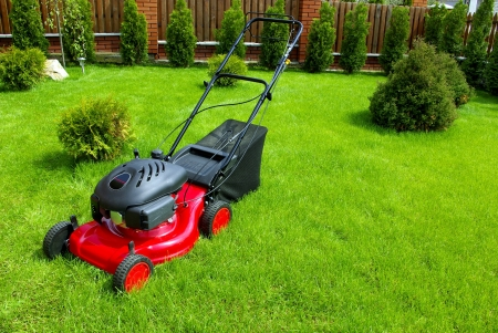 mower: Lawn mower in the garden