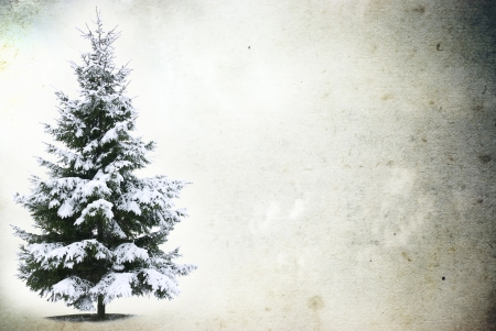 black and white cone: Christmas Tree - Isolated over grunge background