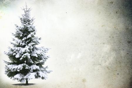 Kerstboom - Geà ¯ soleerd op grunge achtergrond