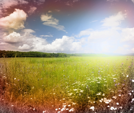 Green meadow under blue sky with clouds Stock Photo - 17979977