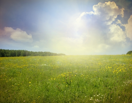 seasonic: Green meadow under blue sky with clouds
