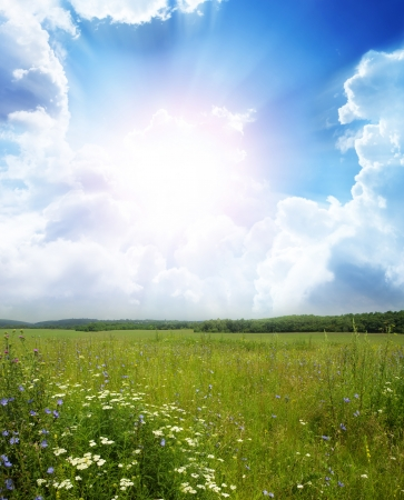 Green meadow under blue sky with clouds  Stock Photo - 17979988