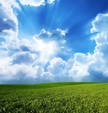 雲と青い空の下、緑の草原 写真素材