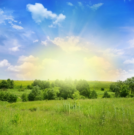 specific: Green meadow under blue sky with clouds
