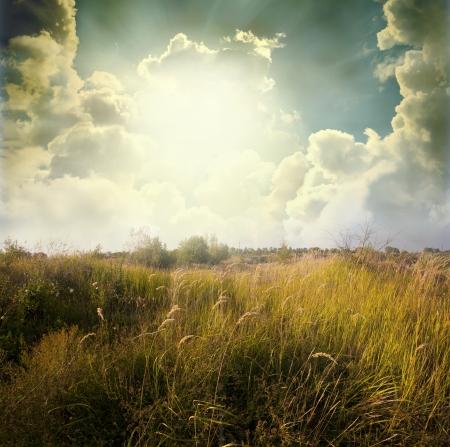 구름과 푸른 하늘 아래 녹색 초원