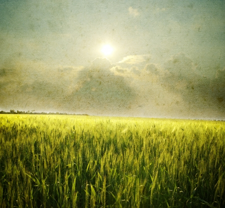 Grunge image of field and sky.  Stock Photo - 18031559