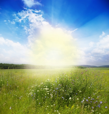 Green meadow under blue sky with clouds Stock Photo - 18031549