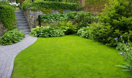 garden landscaping: Garden stone path with grass growing up between the stones
