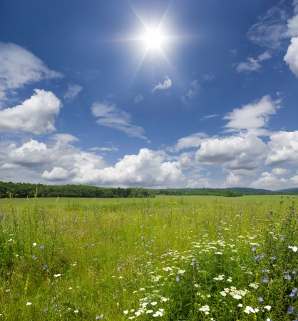 Green meadow under blue sky with clouds Stock Photo - 18106286