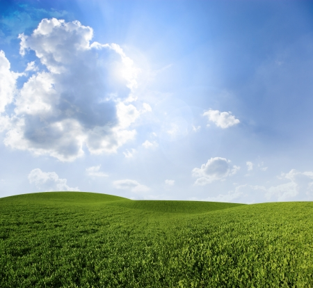 grass field: Green meadow under blue sky with clouds
