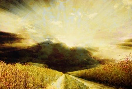 Rural dirt road through the field photo
