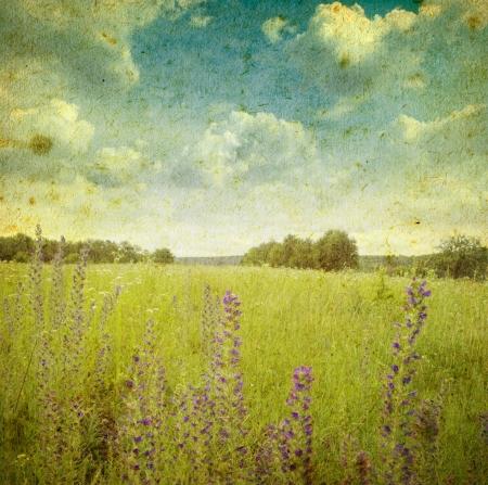 Grunge beeld van een veld