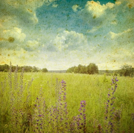 grunge image of a field  photo