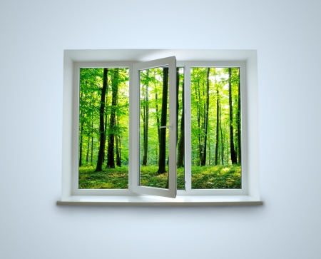 Window with a kind in the forest Stock Photo