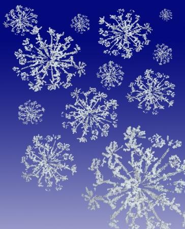 Grungey blue  base with white snowflake border