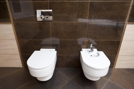 watercloset: Luxury bathroom closeup - the water-closet and bidet