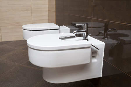 Luxury bathroom closeup - the water-closet and bidet   photo