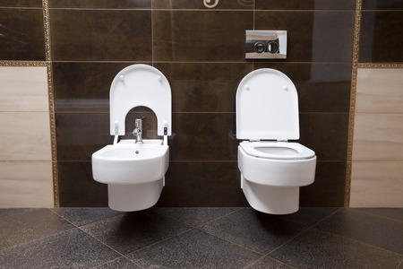 watercloset: Luxury bathroom closeup - the water-closet and bidet.