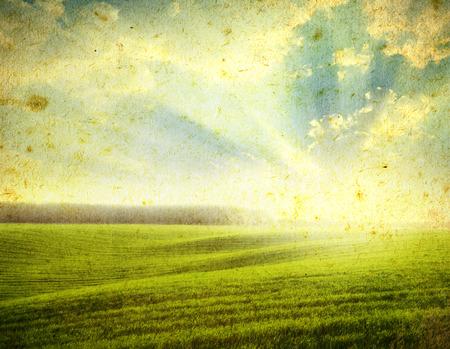 grunge image: grunge image of a field