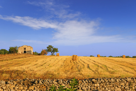 farmhouse: Summertime: rural landscape. Harvested field with bales of hay.- Apulia ITALY-Harvested field with hay bales and farmhouse.