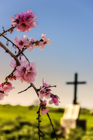 EASTER.Death and rebirth: the tomb and almond flowers 스톡 콘텐츠