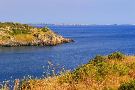 scrub grass: SUMMER SEASCAPE. Salento coast: Bay Uluzzo (Lecce) .Italy (Apulia) .Bay Uluzzo .In the background the city of Gallipoli. Uluzzo Bay is a small natural gulf Located within the protected area known as Porto Selvaggio.
