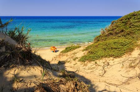 paisaje mediterraneo: paisaje de verano: una reserva natural de Torre Guaceto.BRINDISI (Apulia) maquis -ITALIA-Mediterráneo: un santuario de la naturaleza entre la tierra y el mar. Foto de archivo