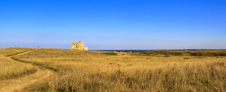 Summer landscape: a nature reserve of Torre Guaceto.BRINDISI (Apulia) -Italy- Race to the watchtower. Mediterranean maquis: a nature sanctuary between the land and the sea. 版權商用圖片