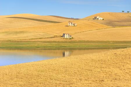 RURAL LANDSCAPE SUMMER.Between Apulia and Basilicata: Farmhouses surrounded by grain fields. Lake Basentello, Poggiorsini (ITALY)