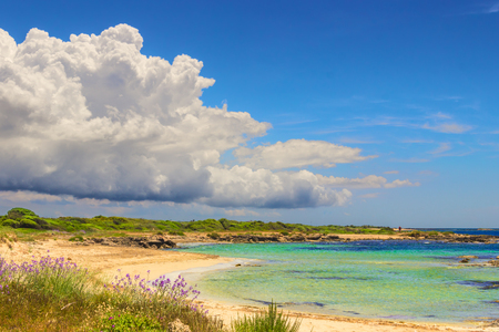 The most beautiful sandy beaches of Apulia. ITALY (SALENTO) .From Torre Pali Pescoluse to the shore is made of a so fine white sand and clear sea vashed by to know That it is called Maldives of Salento. 版權商用圖片